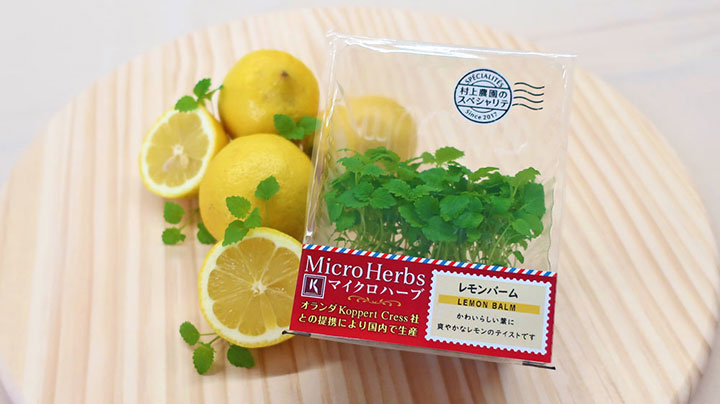 「レモンバーム」などマイクロハーブシリーズの新商品発売 村上農園